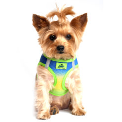 American River Mesh Dog Harness Cobalt Green