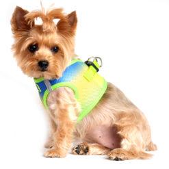 American River Mesh Dog Harness Cobalt Green side view