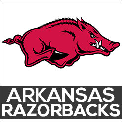 Arkansas Razorbacks Dog Products