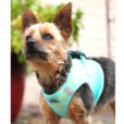 Aruba Blue American River Dog Harness photo