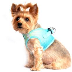 Aruba Blue American River Dog Harness side view