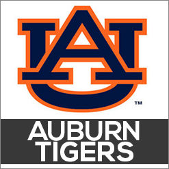 Auburn Tigers Dog Products