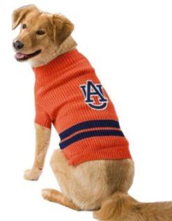 Auburn Tigers NCAA dog sweater on pet