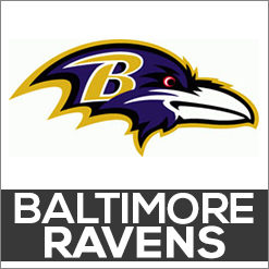 Baltimore Ravens Dog Products