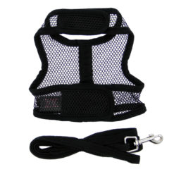 Black Cool Mesh Dog Harness on dog back
