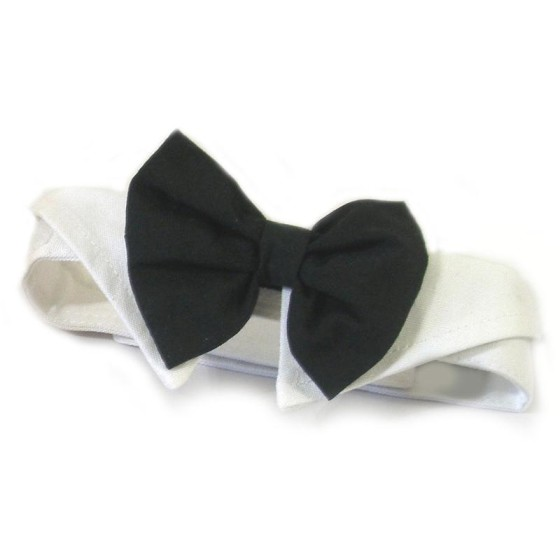 Black Dog Bow Tie and Collar