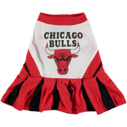 Chicago Bulls NBA Dog Cheerleader Dress