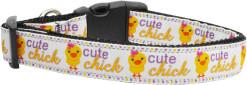 Cute Chick Colorful Adjustable Dog Collar big