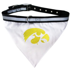Iowa Hawkeyes NCAA Dog Bandana and Collar