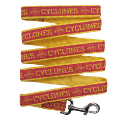 Iowa State Cyclones NCAA Nylon Dog Leash
