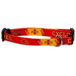 Iowa State Cyclones adjustable dog collar