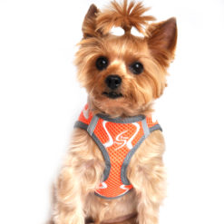 Iridescent Orange American River Ultra Choke Free Harness