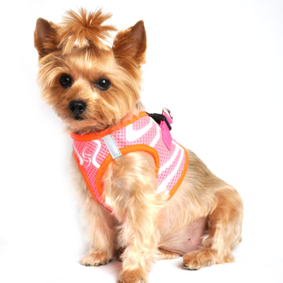 Iridescent Pink American River Dog Harness