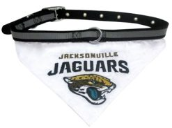 Jacksonville Jaguars NFL dog bandana and collar