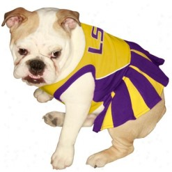 LSU Tigers cheerleader dog dress on pet