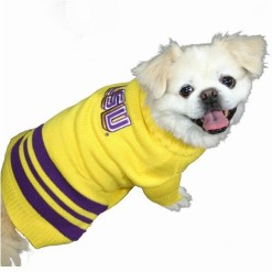 LSU Tigers sweater on pet