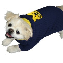 Michigan Wolverines turtleneck dog sweater on pet