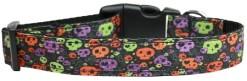 Neon Skulls Halloween adjustable dog collar confetti