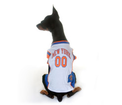 New York Knicks dog jersey on dog