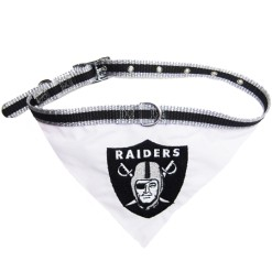 Oakland Raiders dog bandana and collar