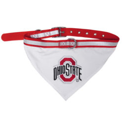 Ohio State Buckets Dog Bandana and Collar