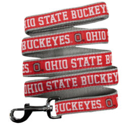 Ohio State Buckets Nylon Dog Leash