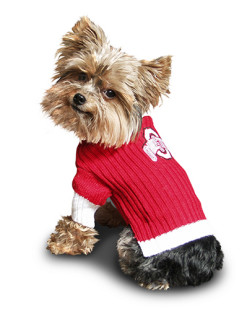 Ohio State Buckeyes turtleneck dog sweater on pet