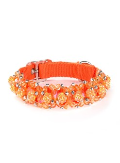 Orange Beeded Dog Collar Fireball