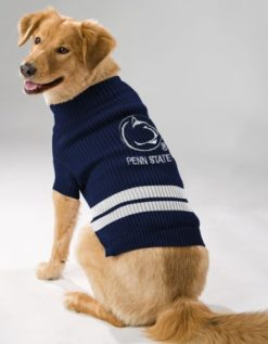 Penn State Nittany Lions NCAA turtleneck dog sweater on pet