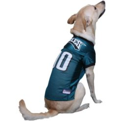 Philadelphia Eagles mesh NFL dog jersey on pet