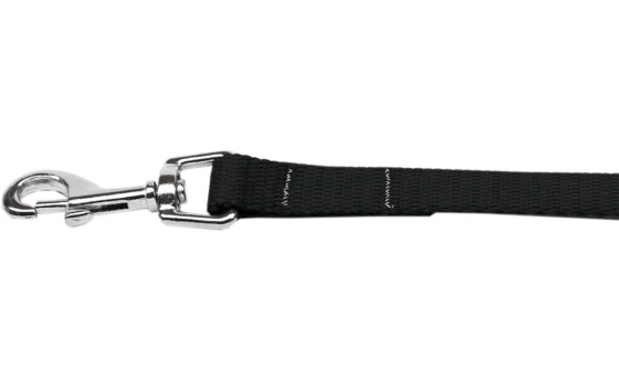 Plain Black Nylon Dog Leash