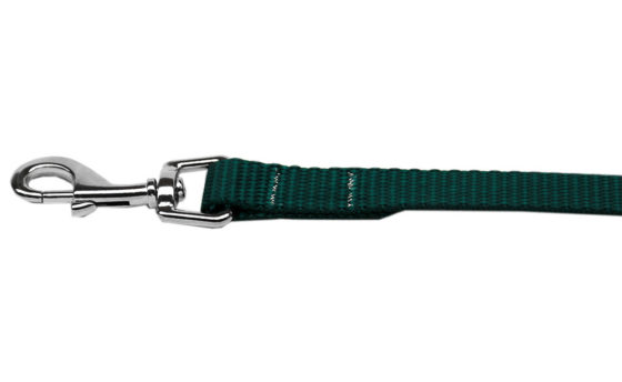 Plain Green Nylon Dog Leash