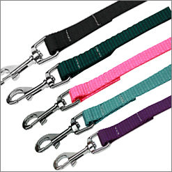 Plain Ribbon Nylon Dog Leashes