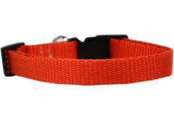 Plain Orange Nylon Dog Collar