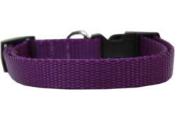 Plain Purple Nylon Dog Collar