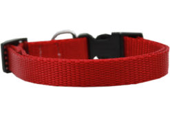 Plain Red Nylon Dog Collar