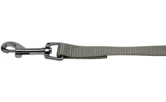 Plain Silver Nylon Dog Leash