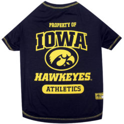 Property of Iowa Hawkeyes Athletics