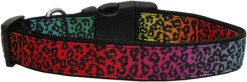 Rainbow Leopard Print Adjustable dog collar