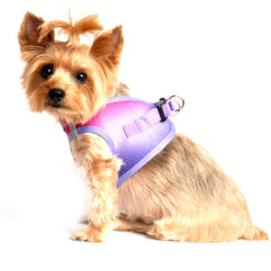 Raspberry Sundae American River Ultra Choke Free Dog Harness side view