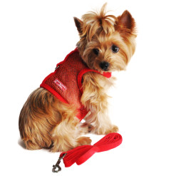 Red Cool Mesh Dog Harness
