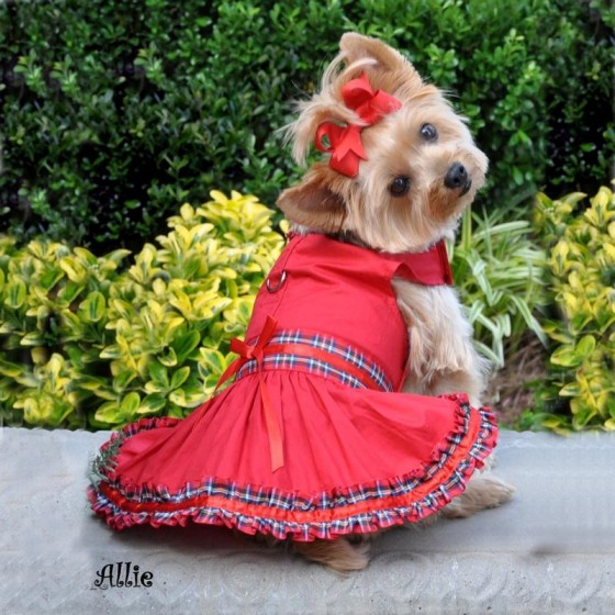 Red Tartan Plaid Dog Dress and Leash for Christmas