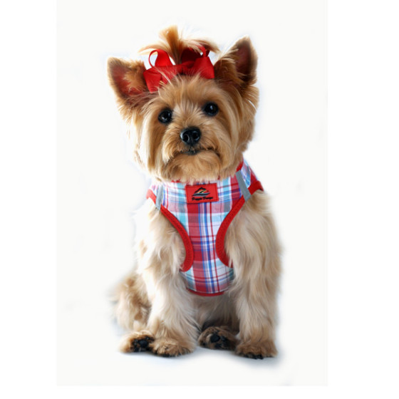 Red and Turquoise Plaid Dog Harness