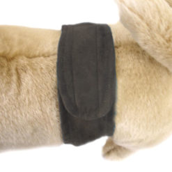 Suede Brown P-Pocket Dog Belly Band on pet