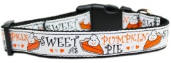 Sweet as Pumpkin Pie adjustable dog collar