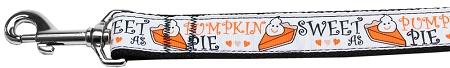 Sweet as Pumpkin Pie nylon dog leash