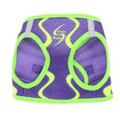 Ultra Violet American River Sport Dog Harness front