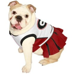 University of Georgia Bulldogs cheerleader dress on pet