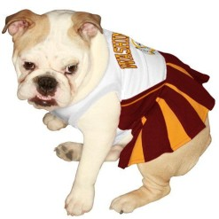 Washington Redskins dog cheerleader dress on pet