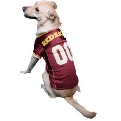 Washington Redskins dog jersey on pet